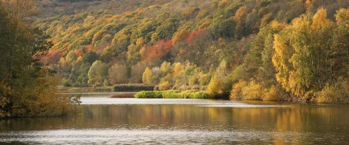 Bodenham Lake – feedback invited