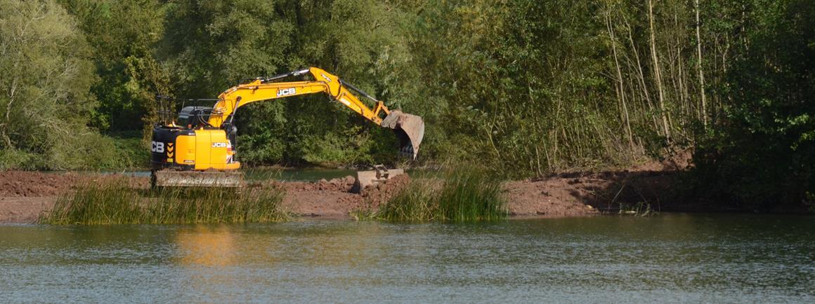 Bodenham Lake wins award for reedbed