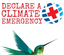 Online Offerings – Climate Emergency UK free resources