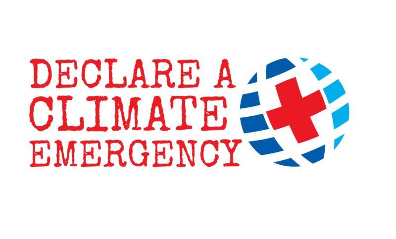 Declare a climate emergency logo