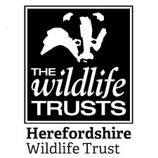 The wildlike trust logo